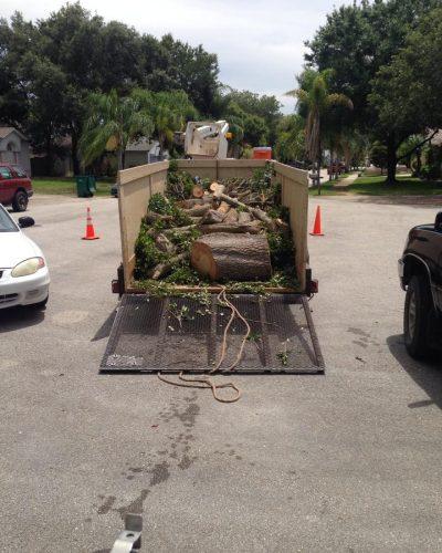 side-stump-grinding-debris-removal